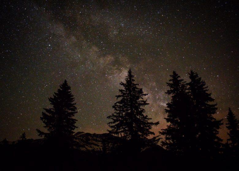Nuit Astro'Hôte – repas, observation, couchage dans des bulles transparentes